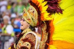 Canrnival 2014 Arkivfoto