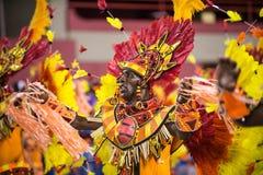 Canrnival 2014 Arkivbilder