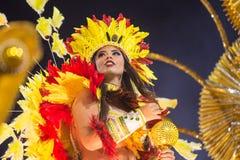 Canrnival 2014 Stockfotografie