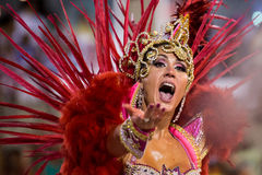 Canrnival 2014 Lizenzfreies Stockfoto