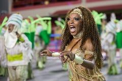 Carnival 2014 in Rio de Janeiro. Stock Photos