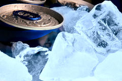Cans of beer and ice royalty free stock photos