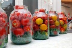 Cans som är förberedda för att grava tomater Royaltyfri Bild