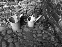 cans två som bevattnar Royaltyfria Foton