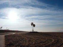 Canse las pistas, la trayectoria y las palmeras en parque de estado de la playa de Dockweiler Imagen de archivo libre de regalías