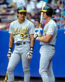 Canseco and McGwirer --The Bash Brothers. Jose Canseco (l) and Mark McGwire (r) of the Oakland A's. Known as the Bash Brothers. (Image taken from color slide royalty free stock image