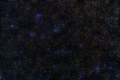 Canstellation del Delphinus Imagenes de archivo