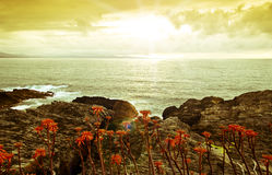 Cantabrian coast Stock Images