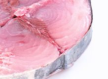Cantabrian white tuna. Royalty Free Stock Photography