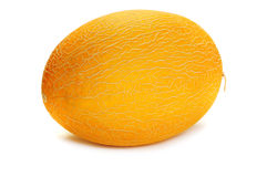 Cantalope Royalty Free Stock Images