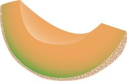 Cantaloup Photographie stock libre de droits