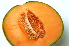 Cantaloup Photos stock