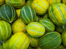 Cantaloup background Stock Photos