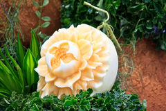 Cantaloup carving 4 Stock Images