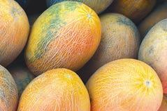 Cantaloup frais Photo libre de droits