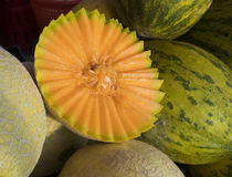 Cantaloup Stock Images
