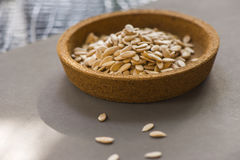Cantaloup seeds on gray background Royalty Free Stock Photo