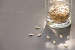 Cantaloup seeds on gray background Stock Photo