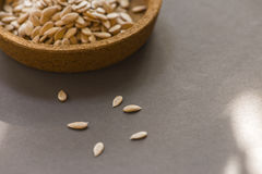 Cantaloup seeds on gray background Stock Photos