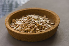 Cantaloup Seeds On Gray Background Stock Images