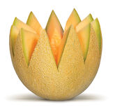 Cantaloupe. King, Crown, Fruit, Health Food, Lean, Ripe, Half, Melon royalty free stock images