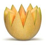 Cantaloupe Royalty Free Stock Images
