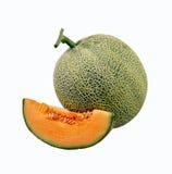 Cantaloupe Fotografering för Bildbyråer