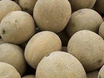 Cantaloupe Royalty Free Stock Photography