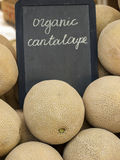 Cantaloupe Royalty Free Stock Image