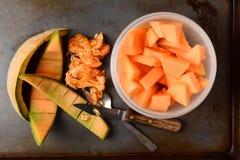Cantaloupe Bowl Rinds Royalty Free Stock Photo