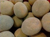 Cantaloupe. S in the market Royalty Free Stock Photography