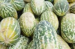 Cantaloupe fruit Stock Image