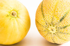 Cantaloupe and Honeydew Melons close up Stock Image