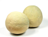 Cantaloupe melon. Two whole cantaloupe melons on white background Stock Photos