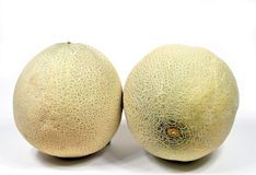 Cantaloupe melon. Two whole cantaloupe melons on white background Stock Images