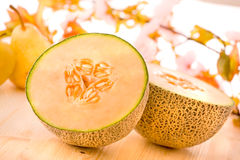 Cantaloupe melon Royalty Free Stock Photography