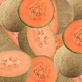 Cantaloupe melon background Royalty Free Stock Photos