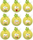 Cantaloupe melon with feature a different expression Stock Photo