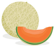 Cantaloupe melon. Full and sliced cantaloupe melon in solid colors Stock Photos