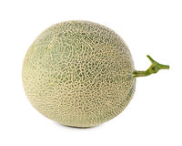 Cantaloupe melon Stock Photography