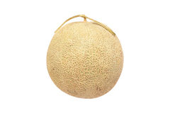 Cantaloupe melon isolated on white background. Royalty Free Stock Photography