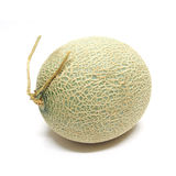 Cantaloupe melon isolated on white background Royalty Free Stock Photos