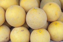 Cantaloupe melon on market mornigng day. Close Royalty Free Stock Photography