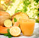 Cantaloupe-melon and pineapple juice smoothie Royalty Free Stock Photography