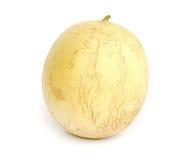 Cantaloupe melon. Royalty Free Stock Photos