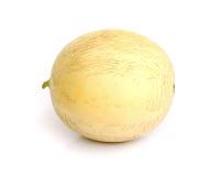 Cantaloupe melon. Royalty Free Stock Image