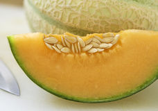 Cantaloupe melon. On white background Stock Image