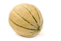 Cantaloupe melon royalty free stock photo