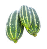 Cantaloupe melon young on white background. Royalty Free Stock Photo