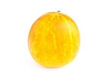 Cantaloupe melone isolated Royalty Free Stock Photo